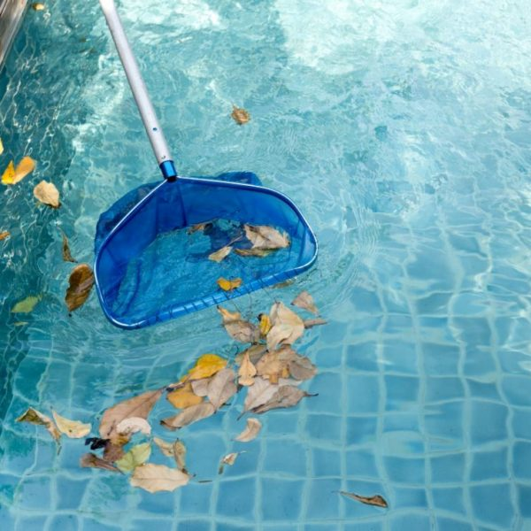 Overview on pool cleaning services